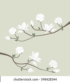 Vector illustration white flowers. White spring magnolia flowers branch