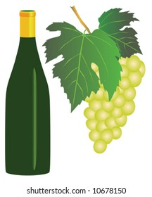 Vector illustration of white grapes and a bottle of white wine