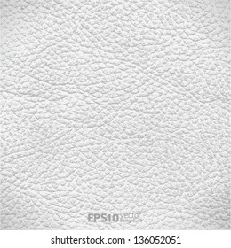 Vector illustration - white leather texture