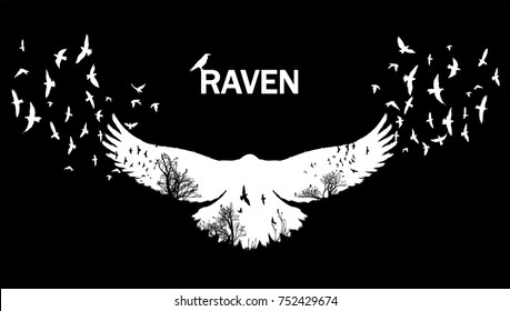 Vector illustration of the white raven silhouette with the fluttering wings on a black background Double exposure effect.