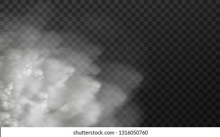 Vector illustration of white smoky clouds  isolated on transparent background