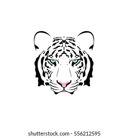 Vector illustration of a white tiger head with blue eye. Suitable as tattoo, team mascot, symbol for zoo or animal preservation center.