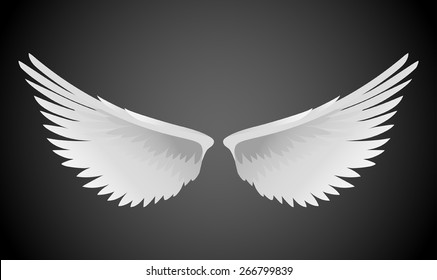 Vector illustration of white wings