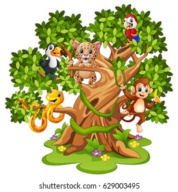 Vector illustration of Wild animals cartoon on the trees