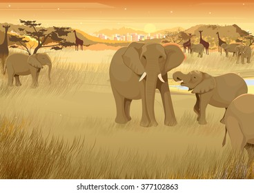 vector illustration of wild animals in jungle of Africa