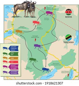 Vector illustration of wildebeest migration shown on the map. The part of the map of Africa is a schematic preview, just to describe migratory routes.