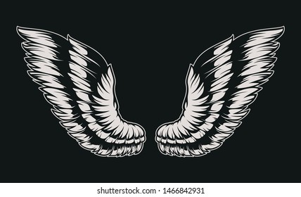 Vector illustration of wings on dark background.