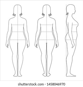 Vector illustration of women's body proportions for clothing design and sewing. Front, back views
