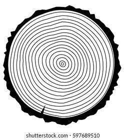 Vector illustration of a wood rings.Tree rings. Abstract background. Painted wood texture.