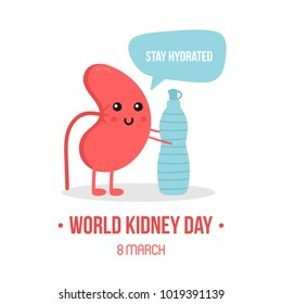 Vector illustration for world kidney day with kidney character, giving advice to stay hydrated, drink enough water.