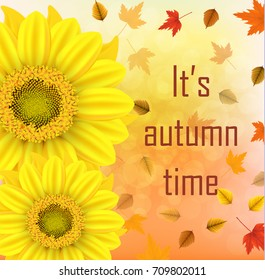 "Vector illustration of an yellow sunflower with fall leaves on an autumn bokeh background. Ready elements with background ""It's autumn time"" typography  for your flyer banner advertisement, card, logo"