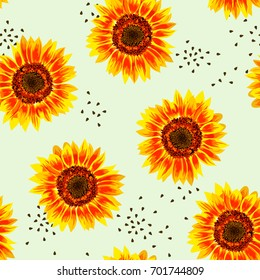 Vector illustration of yellow sunflower seamless pattern. Yellow sunflowers with black seeds on light green background.