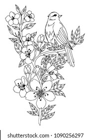 Vector illustration zentangl. A forest bird sits on a branch of a blossoming apricot. Coloring book. Antistress for adults and children. The work was done in manual mode. Black and white.