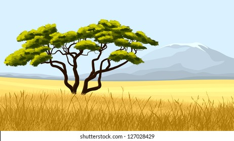 Vector illustration:African landscape, yellow grass and acacia one against mountain on hot day.