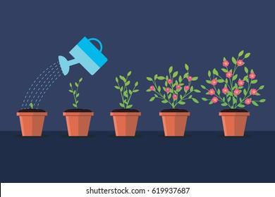 Vector illustration.Green plant flower. Timeline infographic. Watering pot.