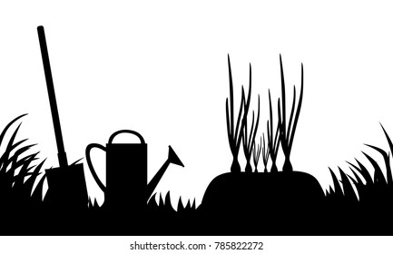 Vector illustrations of silhouette onions bed in the garden