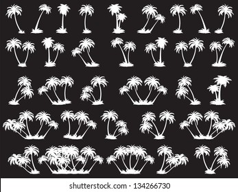 vector illustrations silhouette of palm trees. A set of white trees on a black background