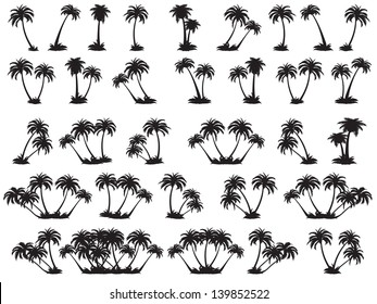Vector illustrations silhouette of palm trees. A set of black trees on a white background