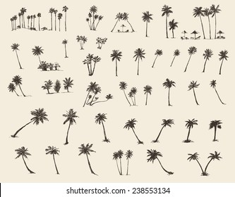 Vector illustrations silhouette of palm trees, hand drawn, sketch, forty pieces.