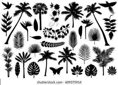 Vector illustrations silhouette of palm trees, leaves, birds and flowers. Tropical collection isolated on white background.