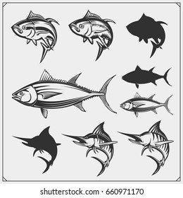 Vector illustrations of Tuna and Marlin. Monochrome design.