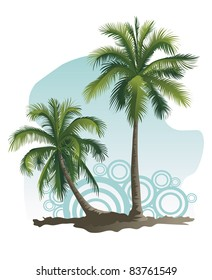 Vector illustrations of two palm tree