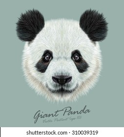 Vector Illustrative portrait of Panda.Cute attractive face bears.