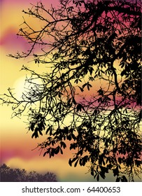Vector image. Autumn chestnut branches against the evening sky cloud