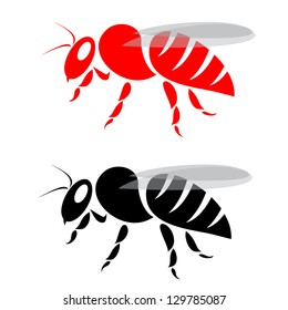 Vector image of an bee on white background