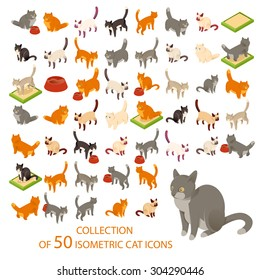 Vector image of a big set of cat isometric icons