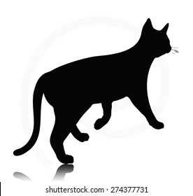 Vector Image - cat silhouette isolated on white background