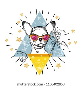 Vector image of a chihuahua dog wearing pink glasses. Prints for T-shirts.