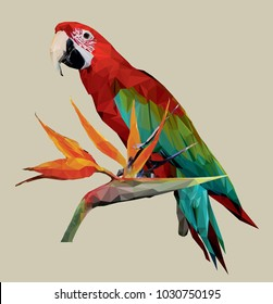 Vector image of a colored parrot on a branch with an exotic tropical flower. Triangulation, polygonal drawing of parrot macaw. Can be used for flyer, poster, invitation, cards on the theme of travel