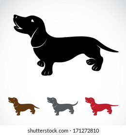 Vector image of an dog (Dachshund) on a white background