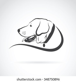 Vector image of an dog labrador head on white background, Animals