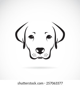 Vector image of an dog labrador on white background, Vector dog labrador head for your design.
