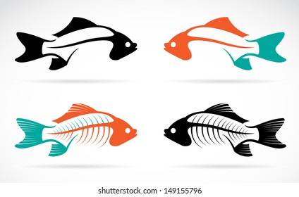 Vector image of an fish bones on white background