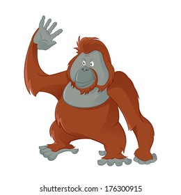 Vector image of fiunny cartoon smiling Orangutan