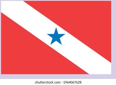 Vector image flag of Para in Brazil