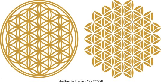 Vector image / Flower of life / sacred geometry, symbol healing and balance