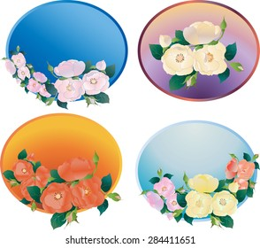 Vector image of flowers of wild rose