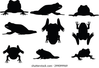 Vector Image - frog silhouette isolated on white background