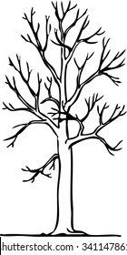 vector image gothic tree without leaves