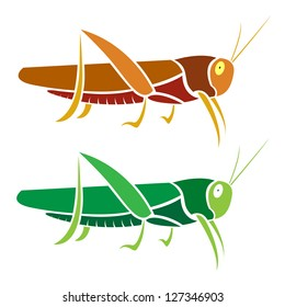 Vector image of an grasshopper on white background
