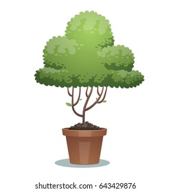 Vector image of a green bonsai tree in the form of a cloud in a brown pot on a white background. Business, icon, finance, office, nature, gardening. Vector illustration.
