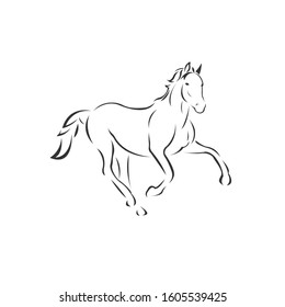 Vector image of an horse black and white. design style. animal. art. symbol. logo. Illustrator. on white background.