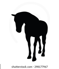 Vector Image - horse silhouette in walking head down pose isolated on white background