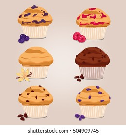 Vector image, illustration. Cupcake, muffin, with raisins, chocolate, raspberries, vanilla, currants, blueberry, brown