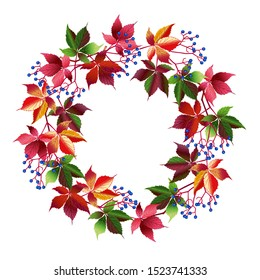 Vector image isolated. Autumn wreath. Autumn decor vine. Red leaves and blue berries of wild grapes.