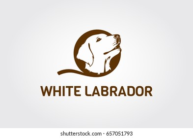 Vector image of an Labrador dog head on white background. Head cute dogs. Head puppy Labrador.